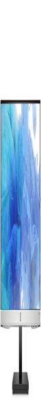 全新 惠普HP 24MH 液晶显示器